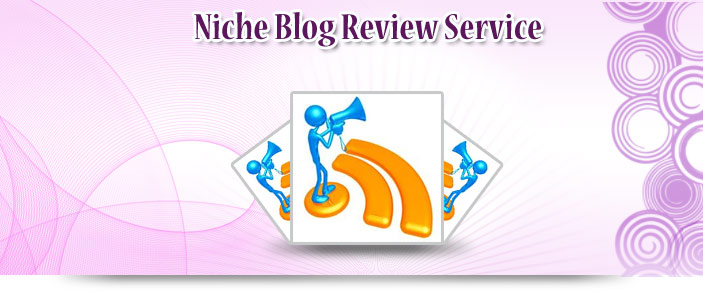 Niche Blog Review Service